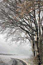 Schnee.........