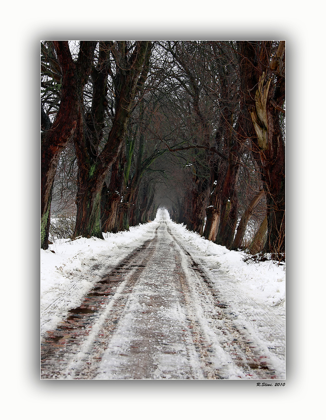 Schnee Allee