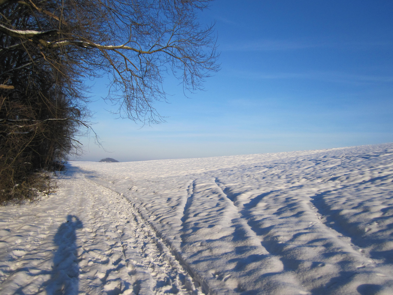 Schnee am Fusse der Schwäbischen Alb