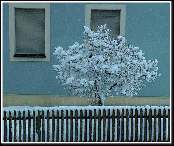 Schnee@