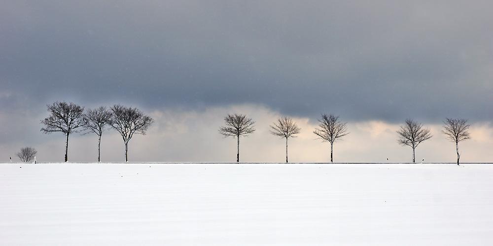 """Schnee-Eifel"""