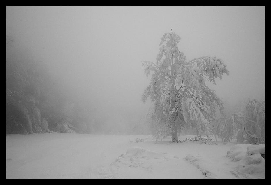 Schnee-Expedition #3