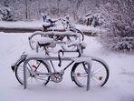 Schnee-Fahrräder