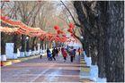Schnee - Festival Harbin - 6299