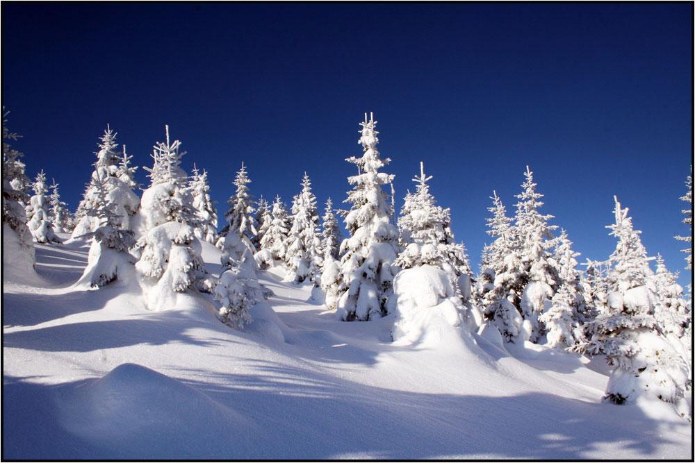 Schnee genug...