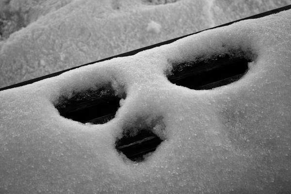 Schnee Gesicht