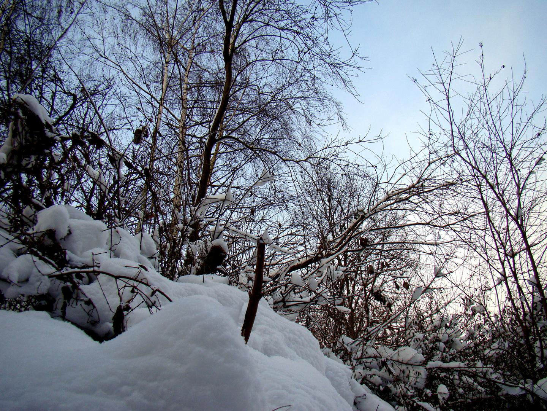 schnee haben ....