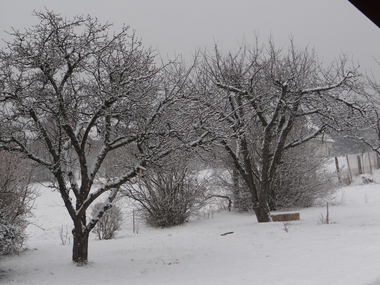 Schnee im Frühling.