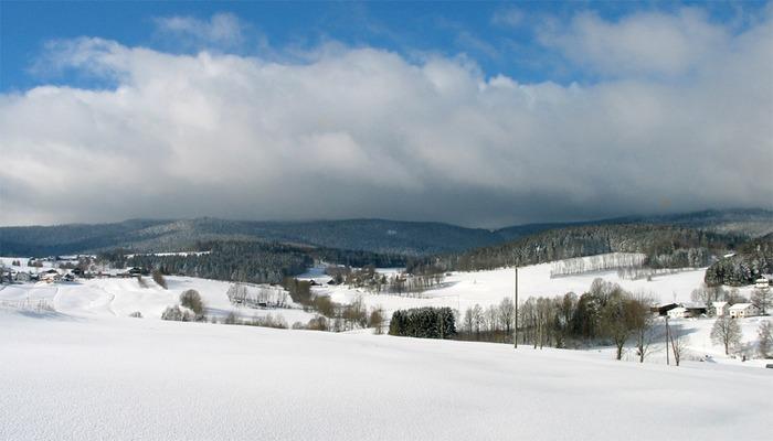 Schnee in Fülle