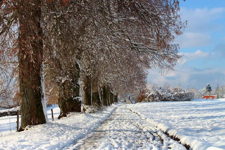 Schnee in Heiligenberg.