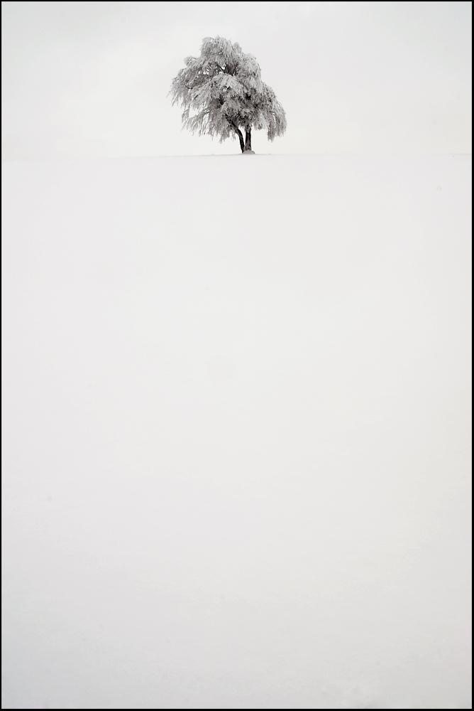 Schnee ist weiß
