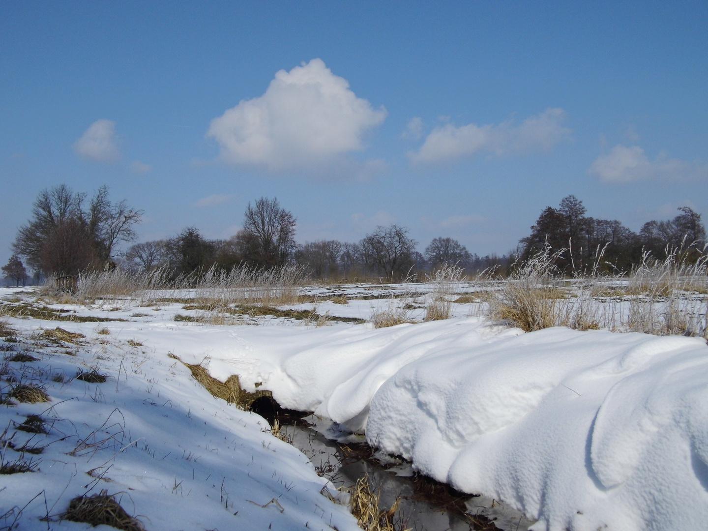 Schnee Kälte und blauer Himmel