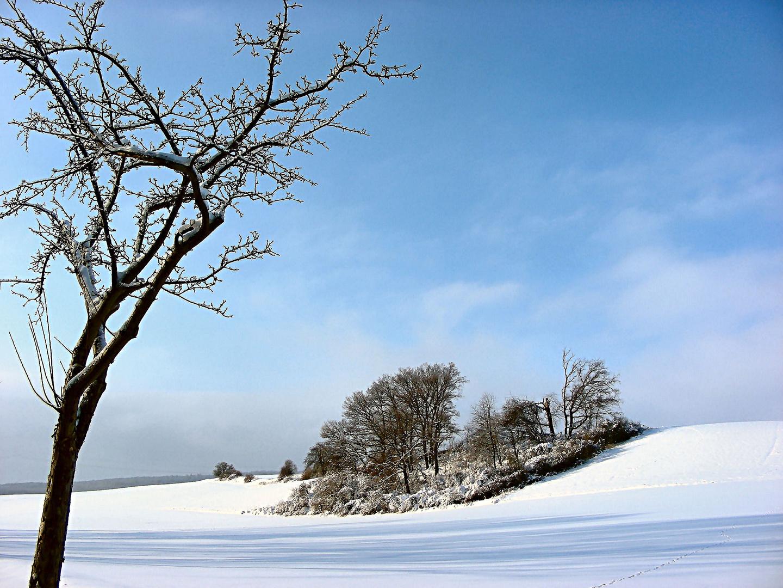 Schnee kann verzaubern
