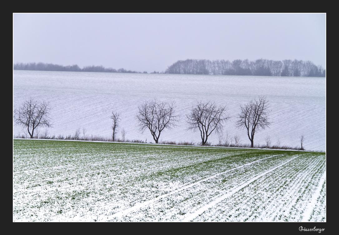 Schnee liegt in der Luft