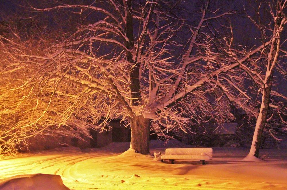 """"""" Schnee - Linde """""""