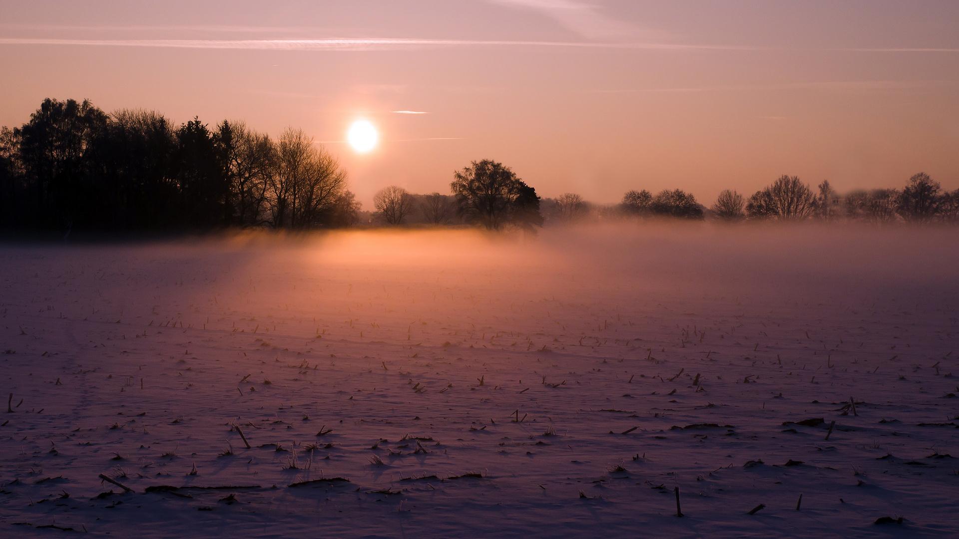 Schnee, Nebel, Sonne...