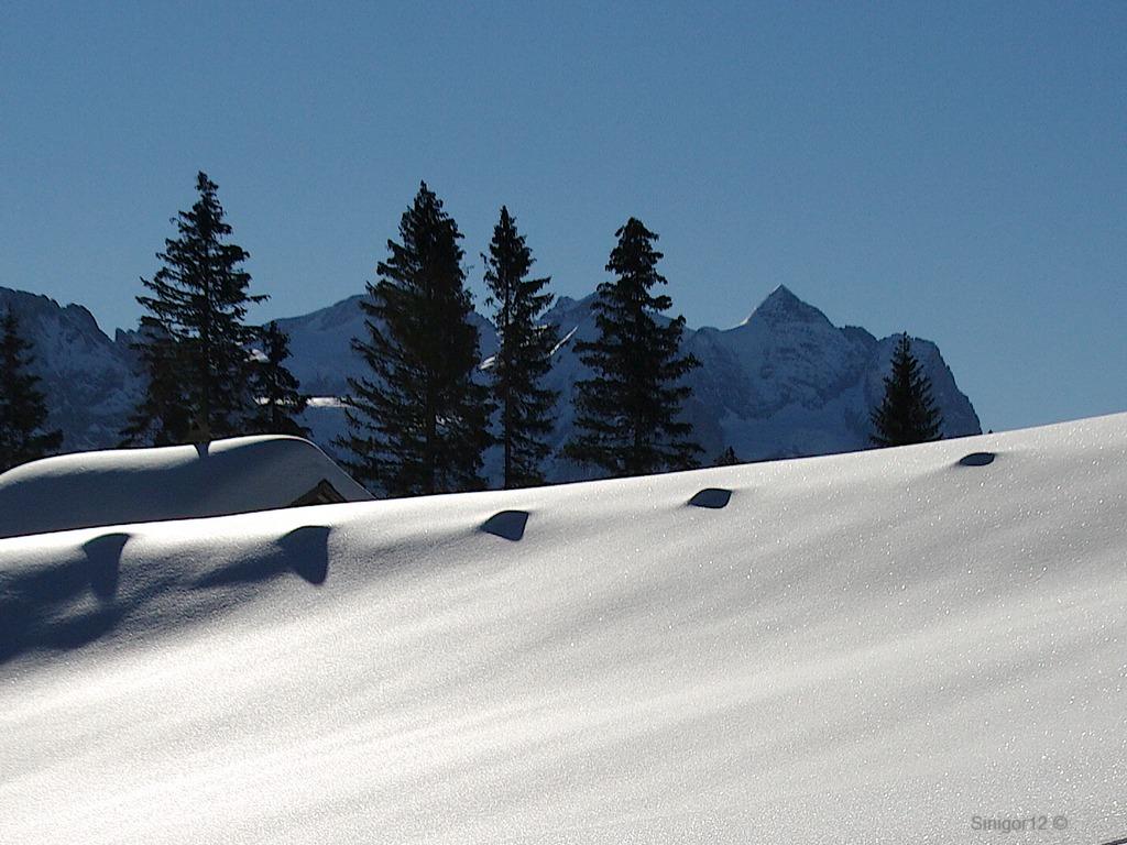 Schnee & Schatten