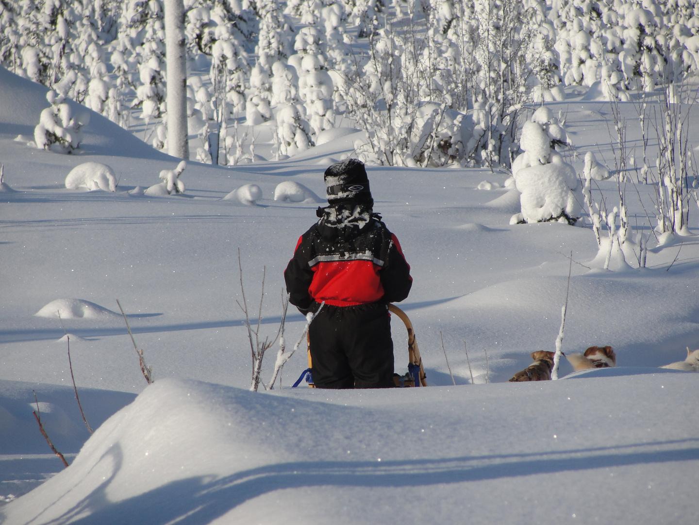 Schnee so weit das Auge reicht - einfach schön