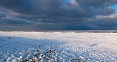 Schnee-Strand