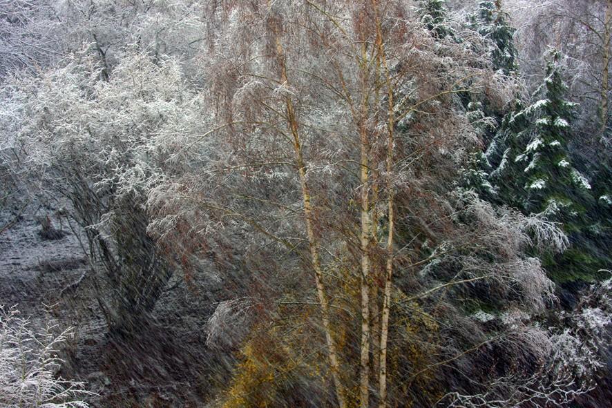 Schnee-Treiben