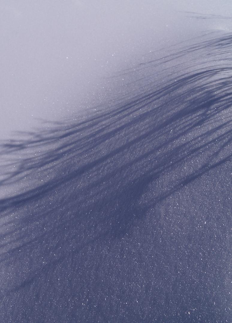 Schnee und Schatten