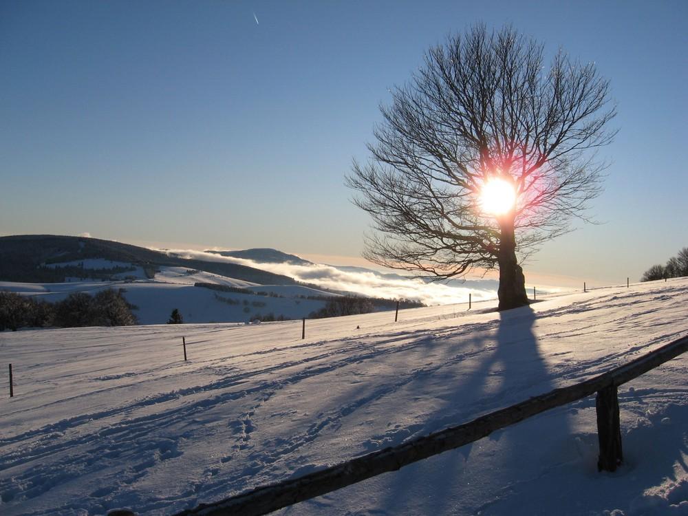 schnee und sonne am schauinsland foto bild jahreszeiten winter natur bilder auf fotocommunity. Black Bedroom Furniture Sets. Home Design Ideas