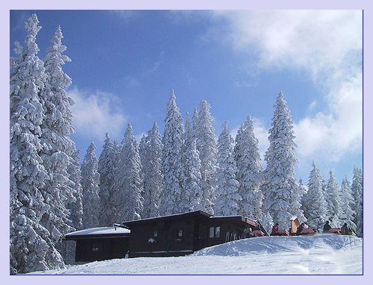 Schnee und Sonne zweiter Versuch