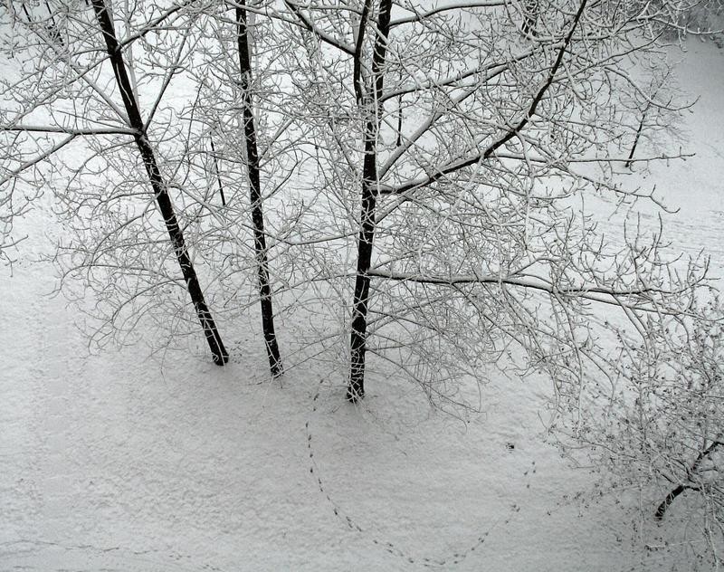 Schnee vom letzten Jahr
