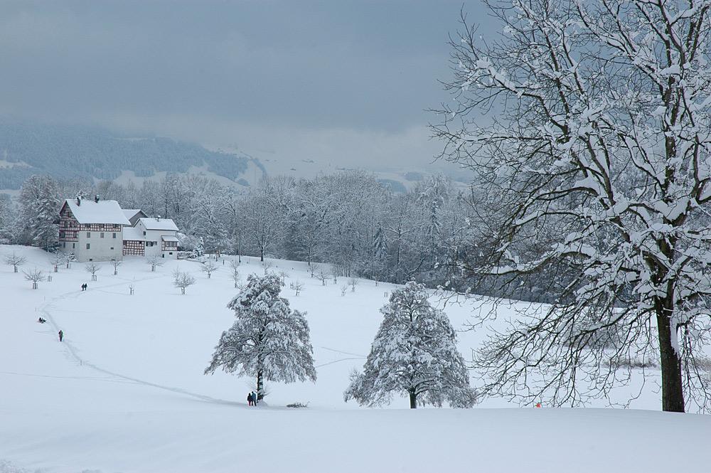 Schnee von gestern…
