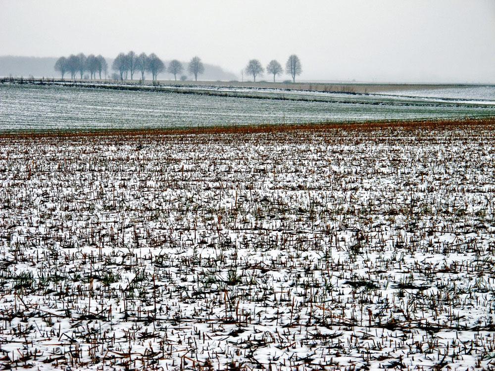 Schnee von gestern....
