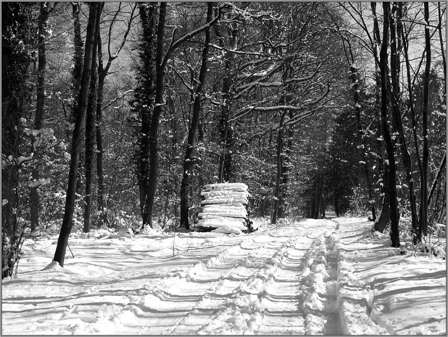 Schnee von gestern....(Reload)