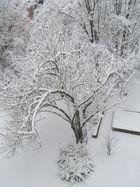 Schnee vor der Tür