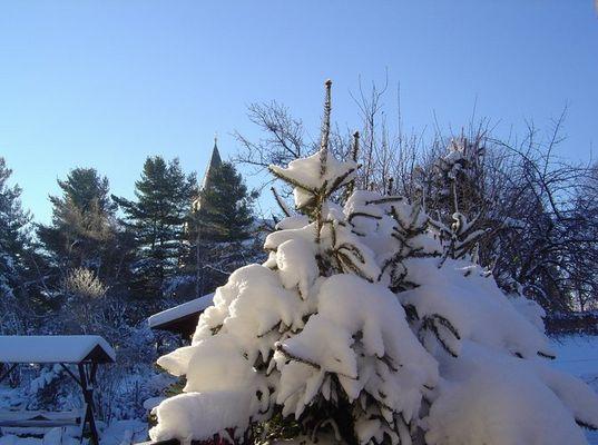 Schnee wie Sahne