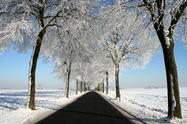 Schneeallee