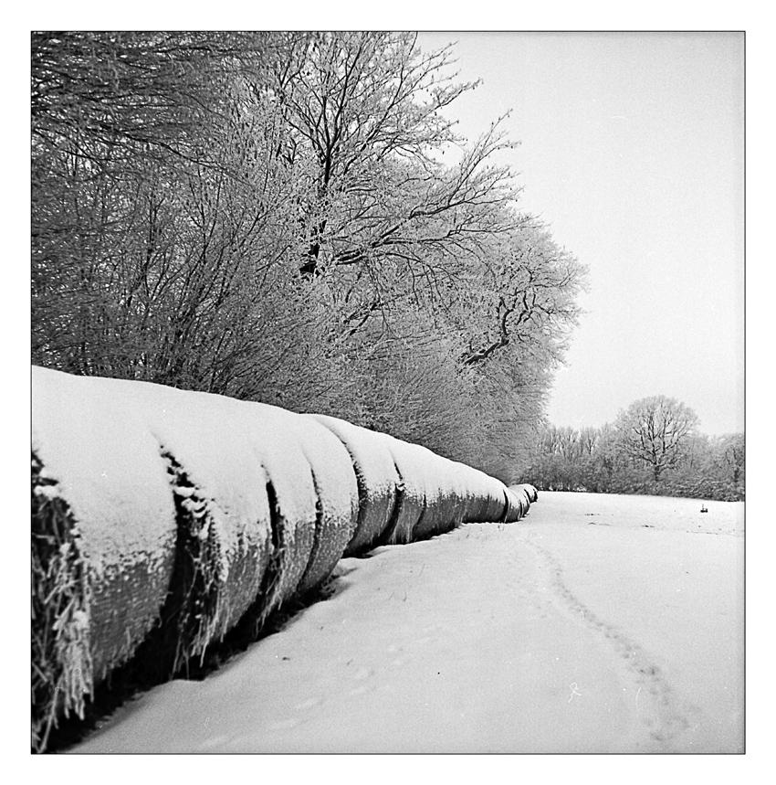 Schneebälle...