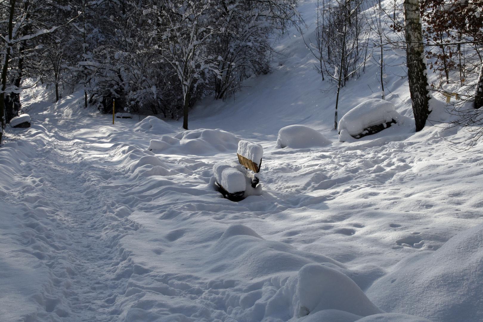 Schneebank am Wegesrand