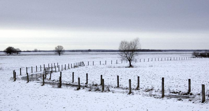 schneebedeckte welt