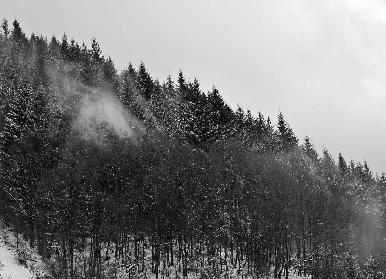 Schneeblasen - Le vent souffle la neige