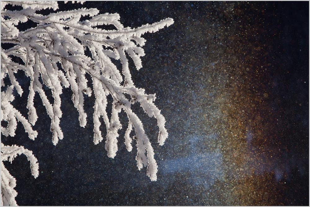 Schneebogen