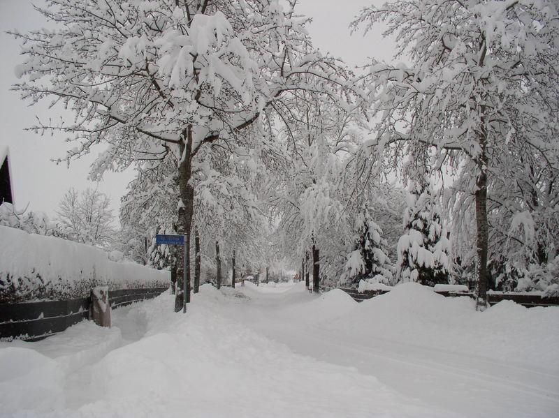 Schneechaos 2006