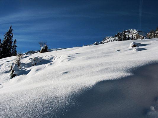 Schneee