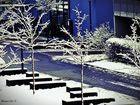 Schneeee