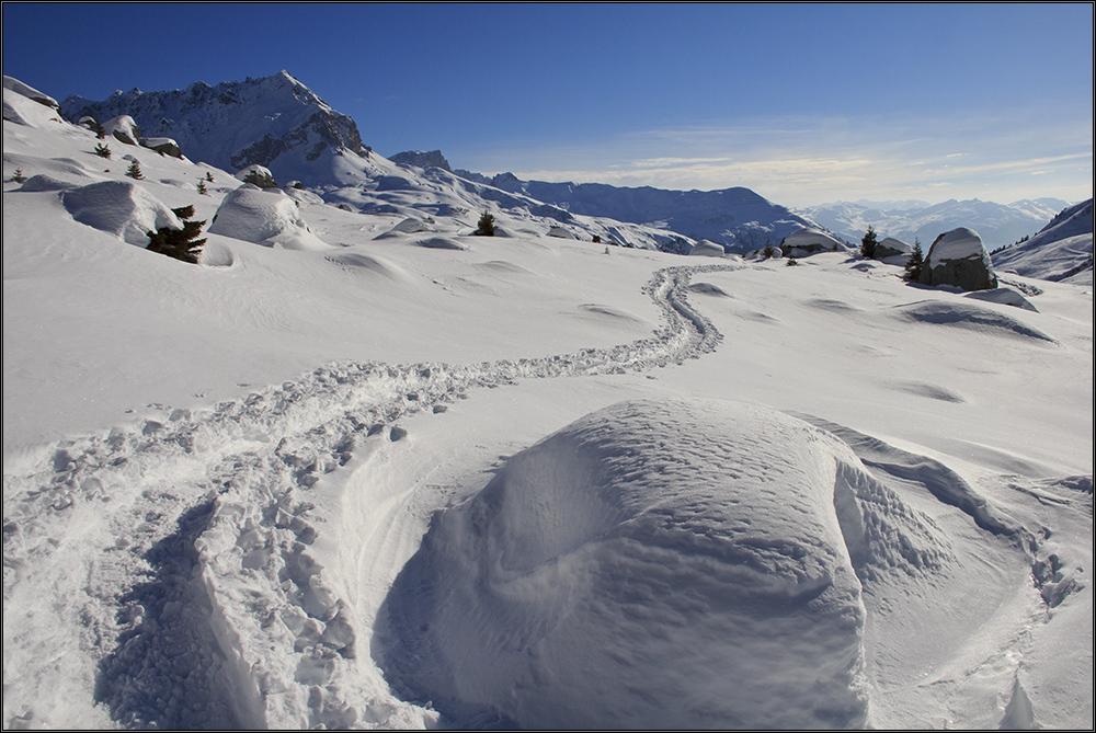 Schneeelefantenpfad