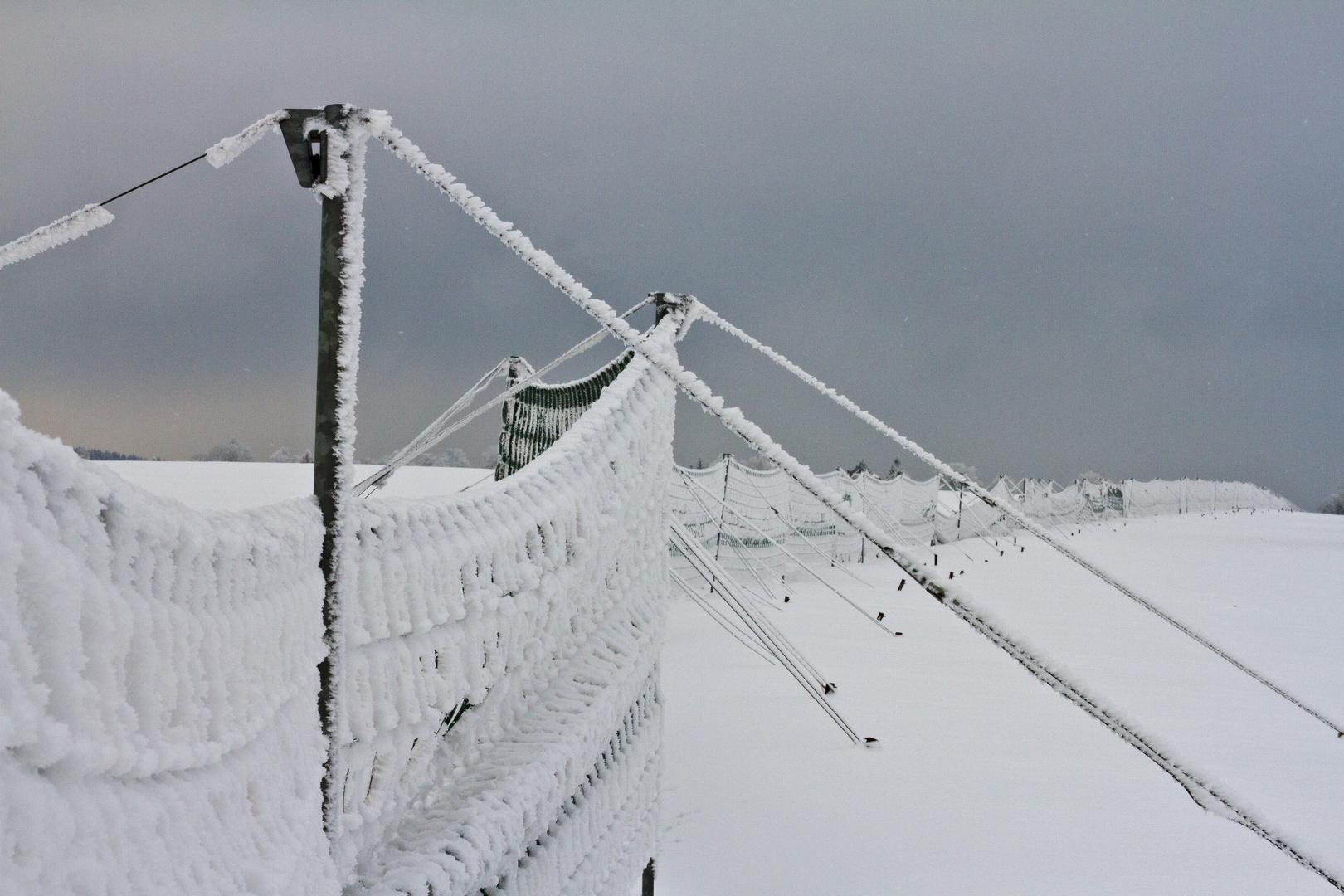 Schneefang