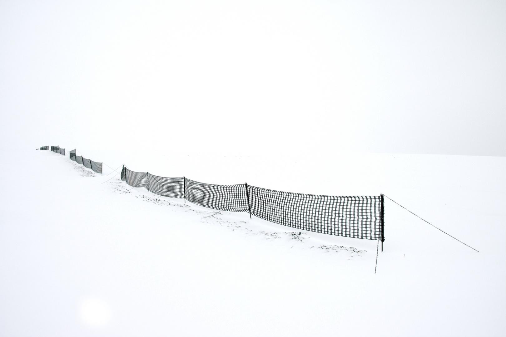 Schneefangnetz