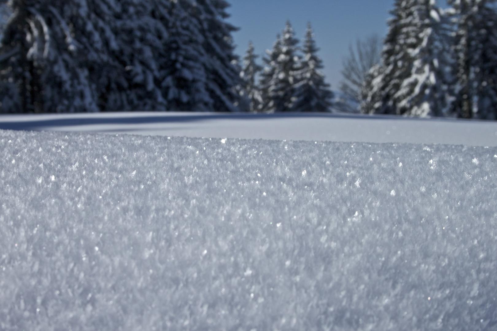 Schneefeld..
