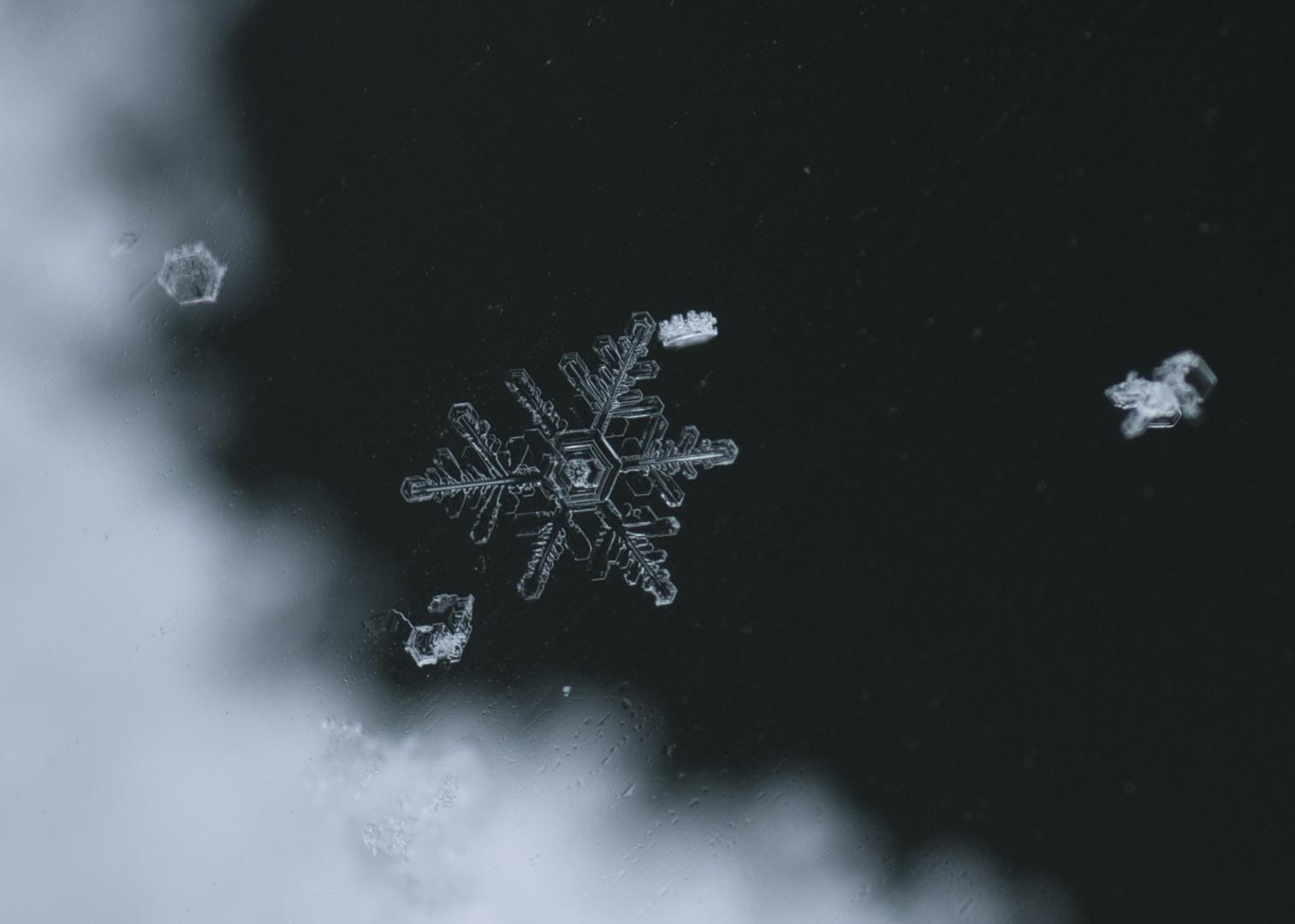 Schneeflocke VI