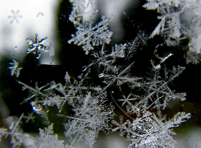 schneeflocken am fenster foto bild jahreszeiten winter universum bilder auf fotocommunity. Black Bedroom Furniture Sets. Home Design Ideas