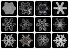 Schneeflocken I - eine Auswahl der Schneeflocken der letzten beiden Wochen