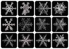 Schneeflocken II - eine Auswahl der Schneeflocken der letzten beiden Wochen